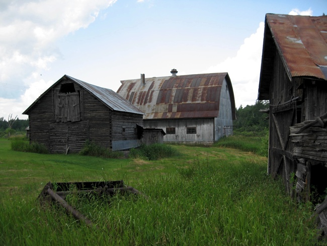 Pic of The pole barn, cow barn & blacksmith shop in 2008